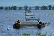 Fishermen lifting netson Lake Dianchi, Kunming, China