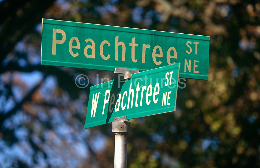 """A confusing pair of street signs showing two of the 71 Peachtree street and road names known in Atlanta. It is often joked that half of the streets in Atlanta are named Peachtree, and the other half have five names to make up for it. While """"Peachtree"""" alone always refers to this street, there are 71 streets in Atlanta with a variant of """"Peachtree"""" in their name. The first Peachtree was a Creek Indian village on the Chattahoochee River called Standing Peachtree. An army outpost built nearby took the name Fort Peachtree. From this has come a forest of Peachtrees. In Margaret Mitchell's epic Civil War romance Gone With the Wind, Scarlett O'Hara lives on various points of Peachtree Street along the novel."""