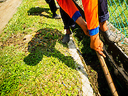 03 JUNE 2015 - KULAI, JOHORE, MALAYSIA: Rohingya refugees work cleaning storm sewers in a middle class neighborhood in Kulai, Malaysia. They are paid about 40 Malaysian Ringgit per day (roughly $11 US) to cut the grass in public spaces and keep sewer lines open. Most of them came to Malaysia as refugees, this menial work is the only work they can find. The UN says the Rohingya, a Muslim minority in western Myanmar, are the most persecuted ethnic minority in the world. The government of Myanmar insists the Rohingya are illegal immigrants from Bangladesh and has refused to grant them citizenship. Most of the Rohingya in Myanmar have been confined to Internal Displaced Persons camp in Rakhine state, bordering Bangladesh. Thousands of Rohingya have fled Myanmar and settled in Malaysia. Most fled on small fishing trawlers. There are about 1,500 Rohingya in the town of Kulai, in the Malaysian state of Johore. Only about 500 of them have been granted official refugee status by the UN High Commissioner for Refugees. The rest live under the radar, relying on gifts from their community and taking menial jobs to make ends meet. They face harassment from Malaysian police who, the Rohingya say, extort bribes from them.    PHOTO BY JACK KURTZ