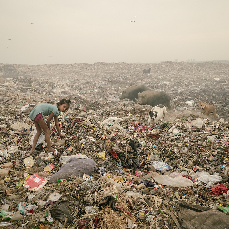 A girl looking for plastic. Recyclers in Bhalswa, on top of one of the giant open air garbage dump which burns 24/7, creating toxic fumes.