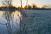 © Licensed to London News Pictures. 29/12/2013. East Bergholt, UK Early morning frost and mist on the River Stour at Deadham Vale this morning 29th December 2013. Photo credit : Stephen Simpson/LNP
