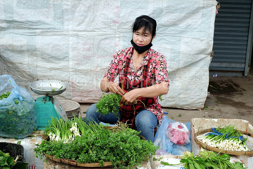 Vendor selling locally grown fresh green salad and spring onions at Khua Din morning market in Vientiane city, Lao PDR. A large variety of local products are available for sale in fresh markets all over Laos, all being sold on small individual stalls. Talat Khua Din is a traditional Lao market close to Vientiane city centre and is currently under threat from the construction of a shopping mall.