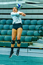BLOOMINGTON, IL - August 24:  during  the IWU Titans Women<br />s Volleyball Green-White scrimmage on August 24 2019 at Shirk Center in Bloomington, IL. (Photo by Alan Look)