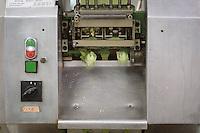 SCHWEIZ - WETZIKON - Nudelwerkstatt 'La Martina' hier die Tortellonimaschine produziert Weizen-Spinat Tortellini - 05. Oktober 2016 © Raphael Hünerfauth - http://huenerfauth.ch