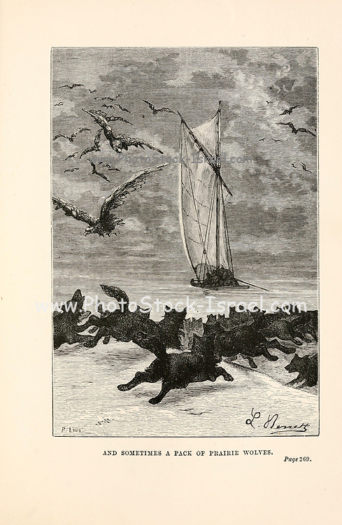 And Sometimes a Pack of Prairie Wolves. from the book ' Around the world in eighty days ' by Jules Verne (1828-1905) Translated by Geo. M. Towle, Published in Boston by James. R. Osgood & Co. 1873 First US Edition