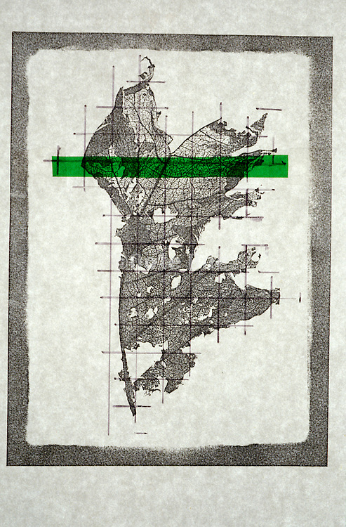 abstract composition with a reproduction leaf