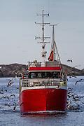 Fiskebåt på vei inn til fiskemotak i Fosnavåg | Fishing boat on it's way to deliver fish in Fosnavåg.