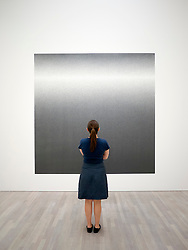 Woman looking at painting Scribbles , Wall Drawing 1227 by Sol LeWitt at art museum K20 or Kunstsammlung at Grabbeplatz Dusseldorf Germany