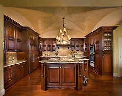 Dark wood contemporary kitchen