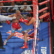Cotto Rodriguez Boxing
