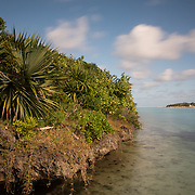 Ile aux Aigrettes, a small island in the Indian Ocean, has been a nature reserve since the 1970s. The Mauritian Wildlife Foundation has replanted the entire island with native vegetation, restoring the island to conditions before the arrival of humans.