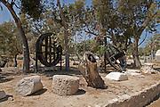 Remain of the Roman Basilica, Ashkelon National park, Israel