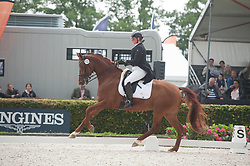 De Jong Priscilla, BEL, Electra DDJ<br /> World Championship Young Dressage Horses <br /> Ermelo 2016<br /> © Hippo Foto - Leanjo De Koster<br /> 29/07/16