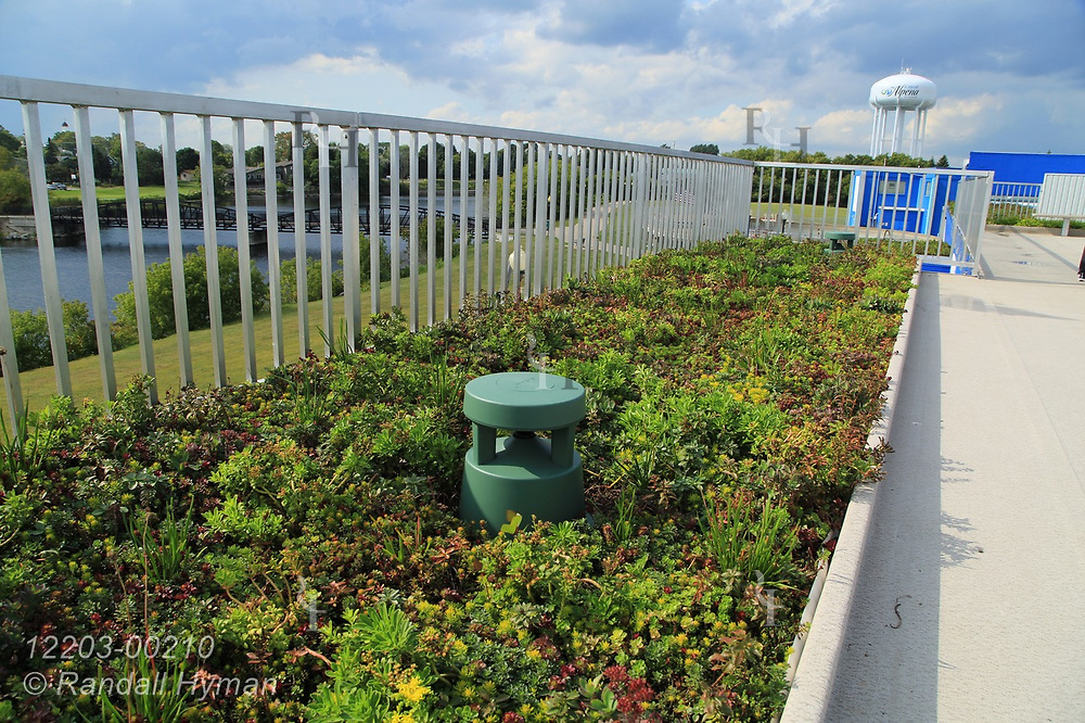 Rain garden, or green roof, atop NOAA's Great Lakes Maritime Heritage Center in Alpena, Michigan.