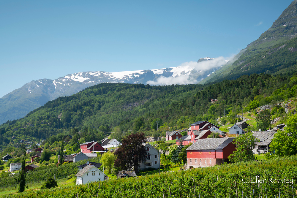 The cultural heritage sight of Agatunet with 32 medieval timber buildings beneath the Folgefonna glacier.  Aga, Norway
