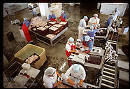 07: FISHERIES FACTORY, TROUT FILETS