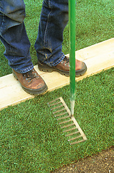 Making a lawn from turf. Firming with a rake whilst standing on a wooden board to protect grass