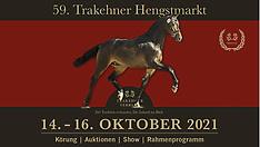 NEUMÜNSTER - 59. Trakehner Hengstmarkt 2021