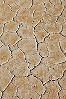 Thule Valley Hardpan (Ibex) Dry Lake Bed cracked mud.