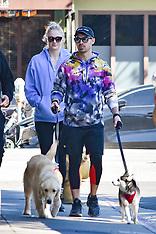 Sophie Turner and Joe Jonas walk their dogs - 25 Feb 2020