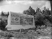 19/05/1956<br /> 05/19/1956<br /> 19 May 1956<br /> <br /> Special for Gore-O'Farrell Sign for Caltex at Newtown Mount Kennedy, Co Wicklow