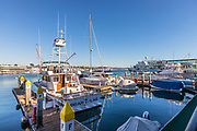 Boats Docked in Newport Marina of Newport Beach