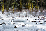 Frozen Truckee River in winter, Tahoe National Forest, California