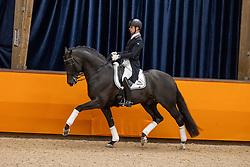 Veeze Bart, NED, Imposantos<br /> Fotodag KWPN Hengstenkeuring 2021<br /> © Hippo Foto - Dirk Caremans<br /> 06/01/2021