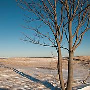 Winter day on Plum Island, Newburyport, MA