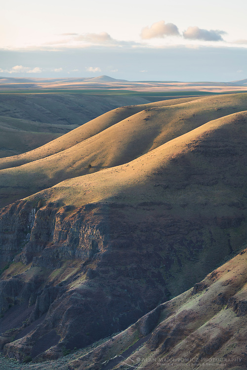 View of bluffs above John Day River cutting through basalt flows of Columbia Plateau in Sherman/Gilliam County, Oregon