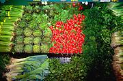 Super market vegetable display.  St Paul Minnesota USA