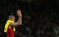 Photo: Paul Thomas.<br /> Arsenal v Liverpool. The Barclays Premiership. 12/11/2006.<br /> <br /> Thierry Henry of Arsenal thanks the crowd.