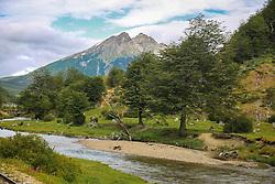 Parque Nacional Tierra del Fuego durante passeio turístico com o Trem do Fim do Mundo. FOTO: Jefferson Bernardes/ Agência Preview