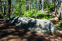 Sweden, Gotska Sandön national park. A stone called The Elephant.