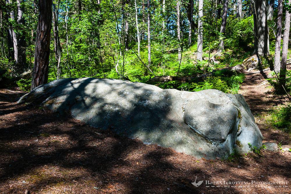 Sweden, Gotska Sandön national park. A stone called The Elephant.