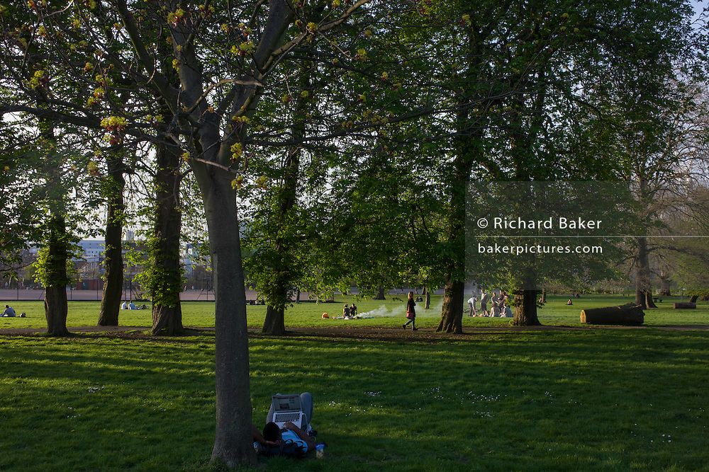 Man uses laptop under trees in a summer park in south London.