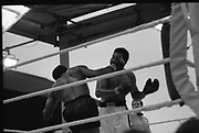 Ali vs Lewis Fight, Croke Park,Dublin.<br /> 1972.<br /> 19.07.1972.<br /> 07.19.1972.<br /> 19th July 1972.<br /> As part of his built up for a World Championship attempt against the current champion, 'Smokin' Joe Frazier,Muhammad Ali fought Al 'Blue' Lewis at Croke Park,Dublin,Ireland. Muhammad Ali won the fight with a TKO when the fight was stopped in the eleventh round.<br /> <br /> A right to the head,Lewis is pictured as he drives this attack home.