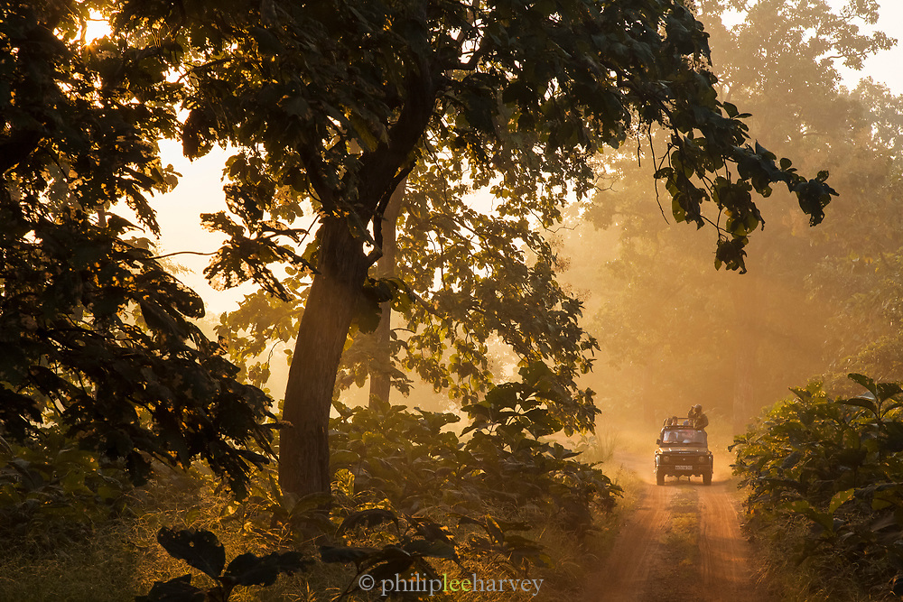 Tourists on safari in Tadoba Andhari Tiger Reserve in India