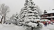 Zakopane 16.02.2012. Ulica Krupówki w zimowej szacie.
