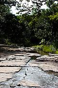 Januaria, 22 de marco de 2009..A fazenda Agroecologica Soma, se intitula uma fazenda produtora de agua. Localiza no municipio de Januaria, a 250 km de Montes Claros, usa a tecnica de Barraginhas ou Bacias de Captacao de Agua de Chuva para recuperar os lencois freaticos e consequentemente os rios da regiao. Em 2005, foram construidas mais de 300 barraginhas na regiao, e acredita-se que o volume de agua dos lencois freaticos cresceu, inclusive com a recuperacao de um rio que corta a propriedade...Na foto, vista do Rio Capivara, um dos corregos que corta a fazenda e teve o volume de agua aumentada devido a tecnica aplicada...FOTO: BRUNO MAGALHAES / AGENCIA NITRO