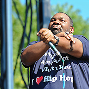 Raekwon The Chef of the Wu-Tang Clan performs at the 2010 Pitchfork Music festival in Chicago, IL.
