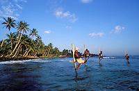 Sri Lanka Côte sud - Weligama - Pêcheur sur échasses