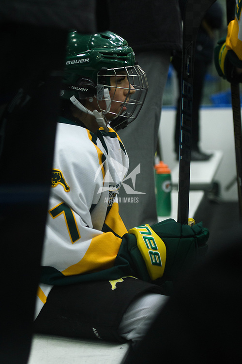 1st year forward Jenna Grube (7) of the Regina Cougars in action during the Women's Hockey home game on October 14 at Co-operators arena. Credit: Arthur Ward/Arthur Images