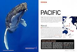 PADI Sport Diver Magazine, January/February 2010, full page, editorial use, USA, Image ID: Humpback-Whale-