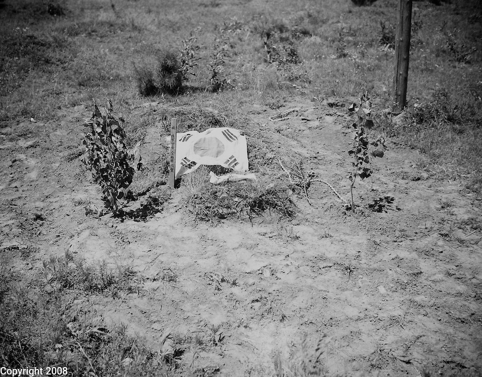 5 July 1950 - War in Korea.The Korean Flag marks the roadside grave of the South Korean Soldier killed in the communist led invasion of the South Korean Republic. U.S. Army Photo - SGT Turnbull