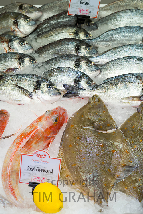 Fresh Bream, Red Gurnard and Sole, displayed on ice with a lemon and on sale at St Helier Fish Market in Jersey, Channel Isles