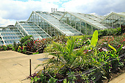 Princess of Wales conservatory glasshouses, Kew Gardens, Royal Botanic Gardens, London, England, UK
