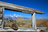 Shane Cabin Autumn, Grand Teton Park, Jackson Hole, Wyoming