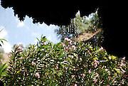Israel, Golan Heights, waterfall