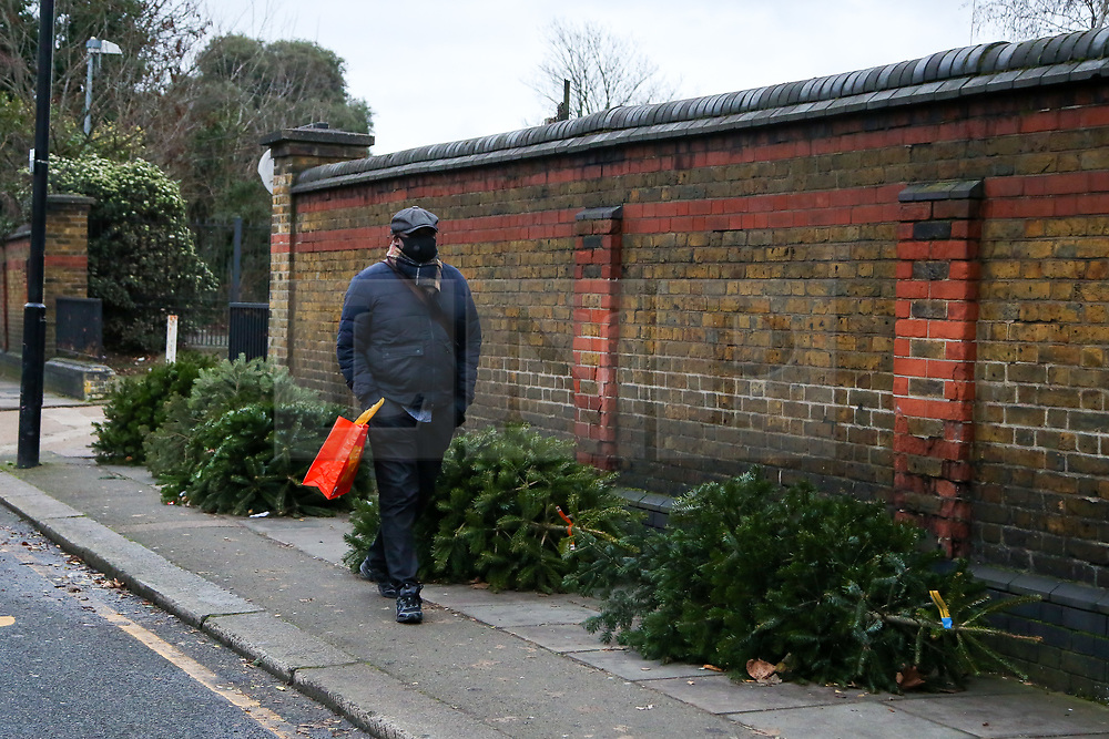 © Licensed to London News Pictures. 26/12/2020. London, UK. A man walks past a line of discarded Christmas trees on a pavement in Haringey, north London on Boxing Day. Traditionally Christmas decorations including the tree are taken down on Twelfth Night after Christmas Day. Photo credit: Dinendra Haria/LNP